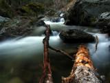 Kelsey Creek flows