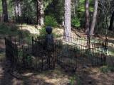 More iron fences