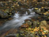 small waterfall in fall