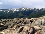 Kelly on her first hike on the PCT near Castle Crags