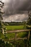 Gloucestershire Field