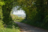 Cotswold Countryside 3