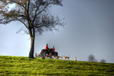 Cotswold Countryside 6