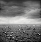 Arnoldas Jurgaitis Photography > The light at it's best