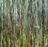 Arnoldas Jurgaitis Photography > Structures / Textures / Patterns
