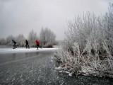 023 - Ankeveense plassen: Betrouwbaar ijs op slechts een enkele plek na.