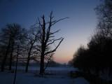 26 january 2010, De Bilt, Houdringe