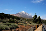 20D 324 - Teide far above the landscape of Tenerife, tomorrow Alex and I will climb this mountain...