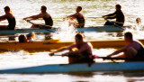 Sixty Colleges Compete in a Regatta at Oak Ridge Tennessee.  Two  2 km heats and finals