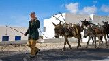 Santorini Farmer and his Entourage