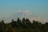 Mt Rainier from Sea-tac