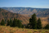 Above Hells Canyon (view east)