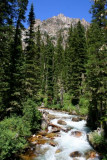 A creek in Cascade Canyon