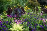 Botanical Gardens in Stanley Park