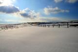0620 fresh snow sun.jpg