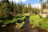 6796 creek by dream lake.jpg