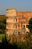 Colloseum from Palatine Hill