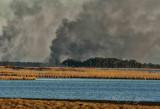 Nature Burning Blackwater NWR,Md