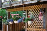 Flower Wellington Commons Dr Va