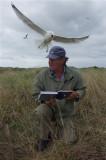 Arnold Gronert checkt de nesten in de meeuwenkolonie op Texel