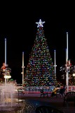 Jacksonville's Official Christmas Tree