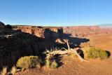 Canyonlands NP - Islands inthe Sky