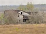Wilson County FM1303
