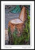 A Faerie Seat