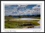 Courtenay River Estuary.