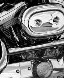 Harley 883 Motor