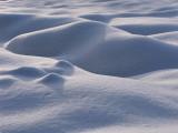 Sense of Snow