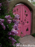 Pink doorway with lilac