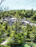 Granite Stairway between Welch and Dickey