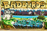 Bad Birds Sign .nt.1155.jpg