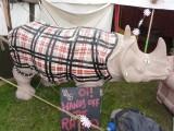 Chav Rhino