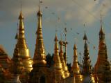 Shwedagon Zedis.jpg