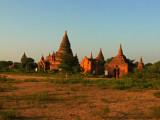 Temple group Bagan.jpg