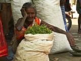 Old lady at flower market.jpg