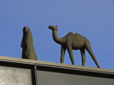 Camel on the roof.jpg