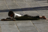 Young prostrator