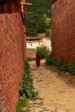 Lone monk in Reting