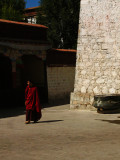 Monk in Gyüme Lower Tantric College in Lhasa