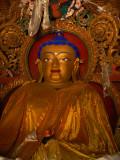 Dressed buddha