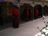Monks on the march
