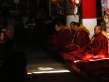 Prayer session in Drepung