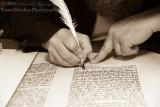 C.A.Y.C. Siyum Sefer Torah