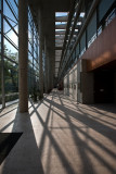 Kenézy Life Sciences Library