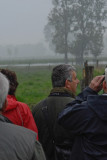 WFNBunsbeek260409 (6).jpg
