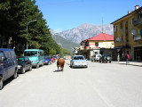 Bajram Curri town