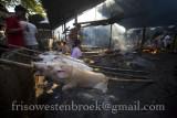 14 Lechon Baboy/Roast Pig